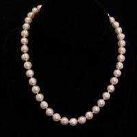Fresh Water Pearl with 14Kt Clasp Necklace